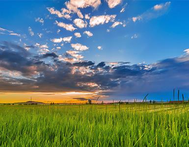 呼伦贝尔草原游,呼伦贝尔大草原,呼伦贝尔旅游