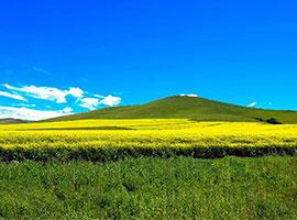 呼伦贝尔旅游,呼伦贝尔大草原