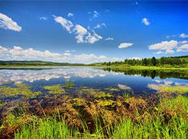 呼伦贝尔旅游,额尔古纳国家湿地公园