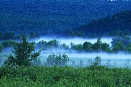 莫尔道嘎国家森林公园景观