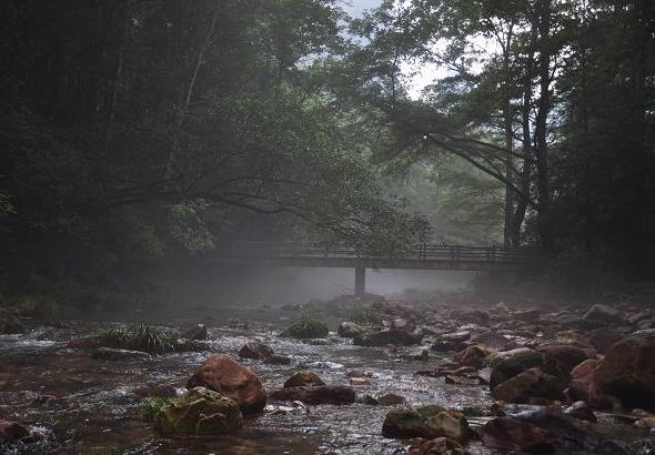 金鞭溪景色